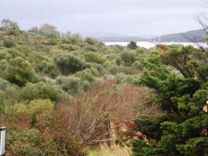 Porto Pozzo trilocale vista mare