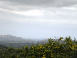 Olbia , casa rurale vista mare
