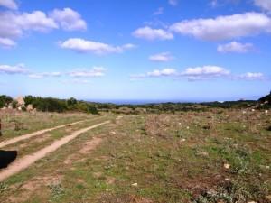 Splendido terreno agricolo  vista mare, Luogosanto, tra Aglientu e Rena Majore
